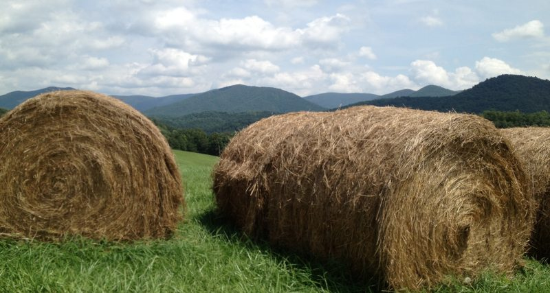 Hay bales lay in the foreground of a mountainous farm.